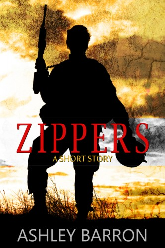 cover of Ashley Barron Zippers