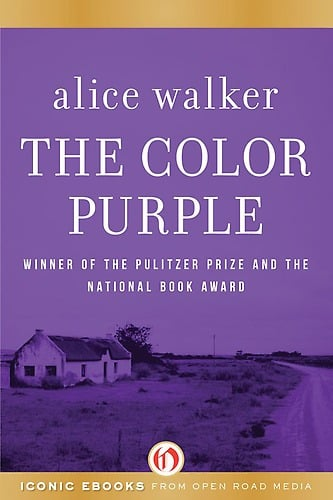 the color purple quotes with page numbers.html