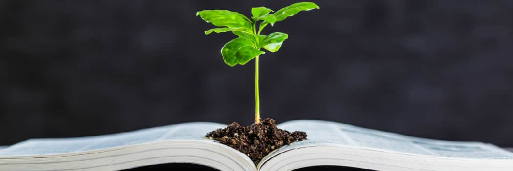 picture of book and seedling from iStock